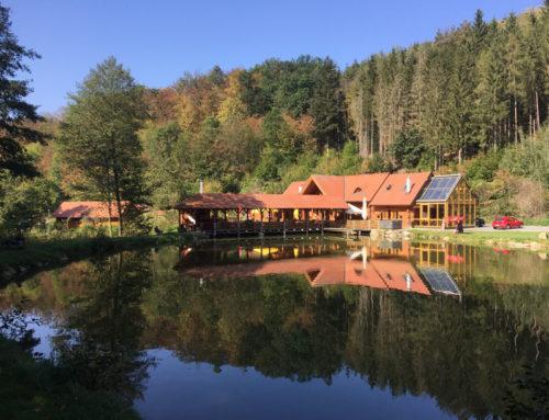 Amethyst Welt & GALLIEN-Die Erlebniswelt im Waldviertel