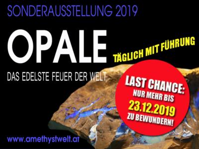 Opal_Ausstellung