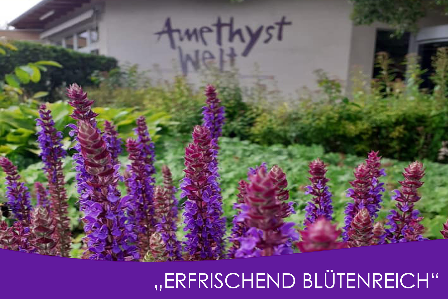 Schaugartentage Niederösterreich