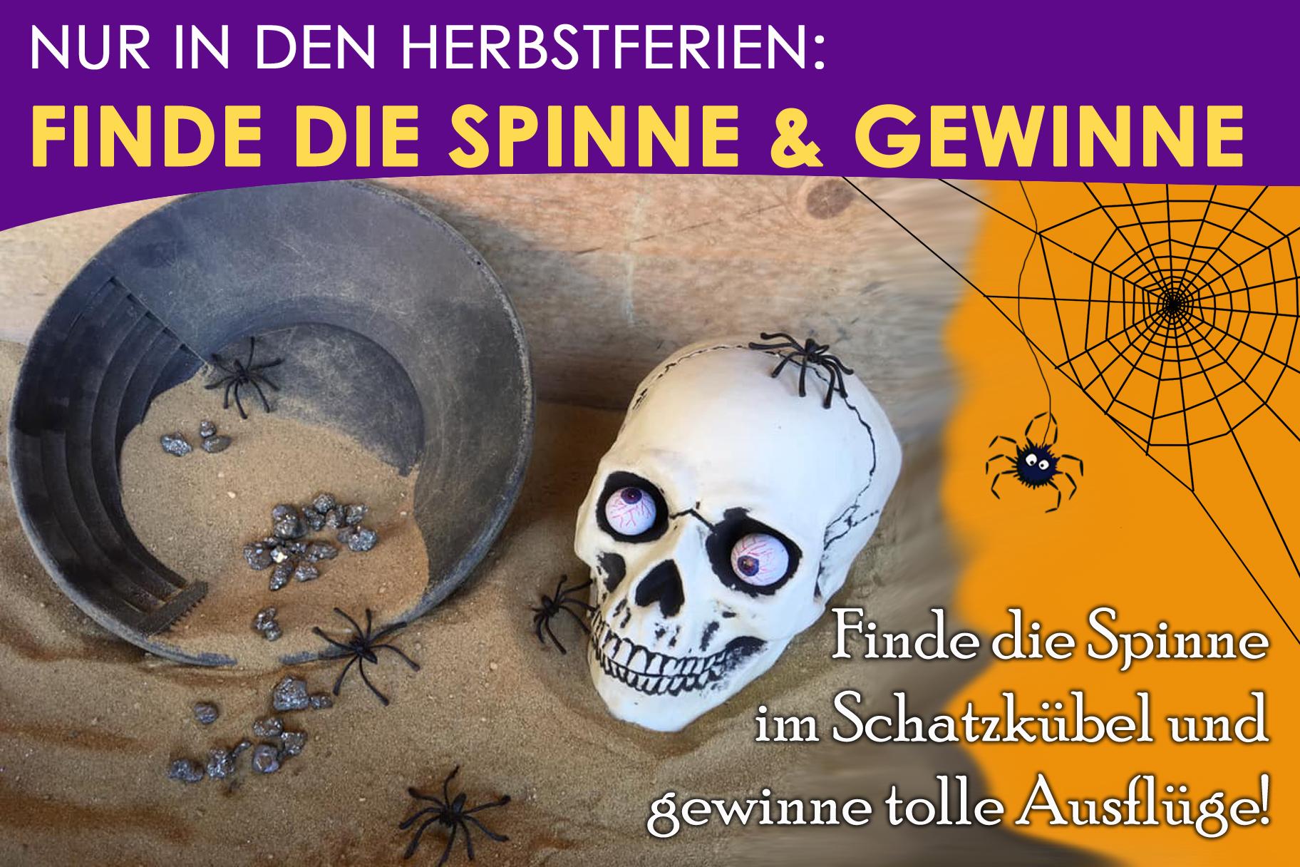 Finde die Spinne & Gewinne